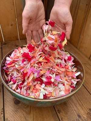 Exemple fleuriste n°881 zone Sarthe par armelle